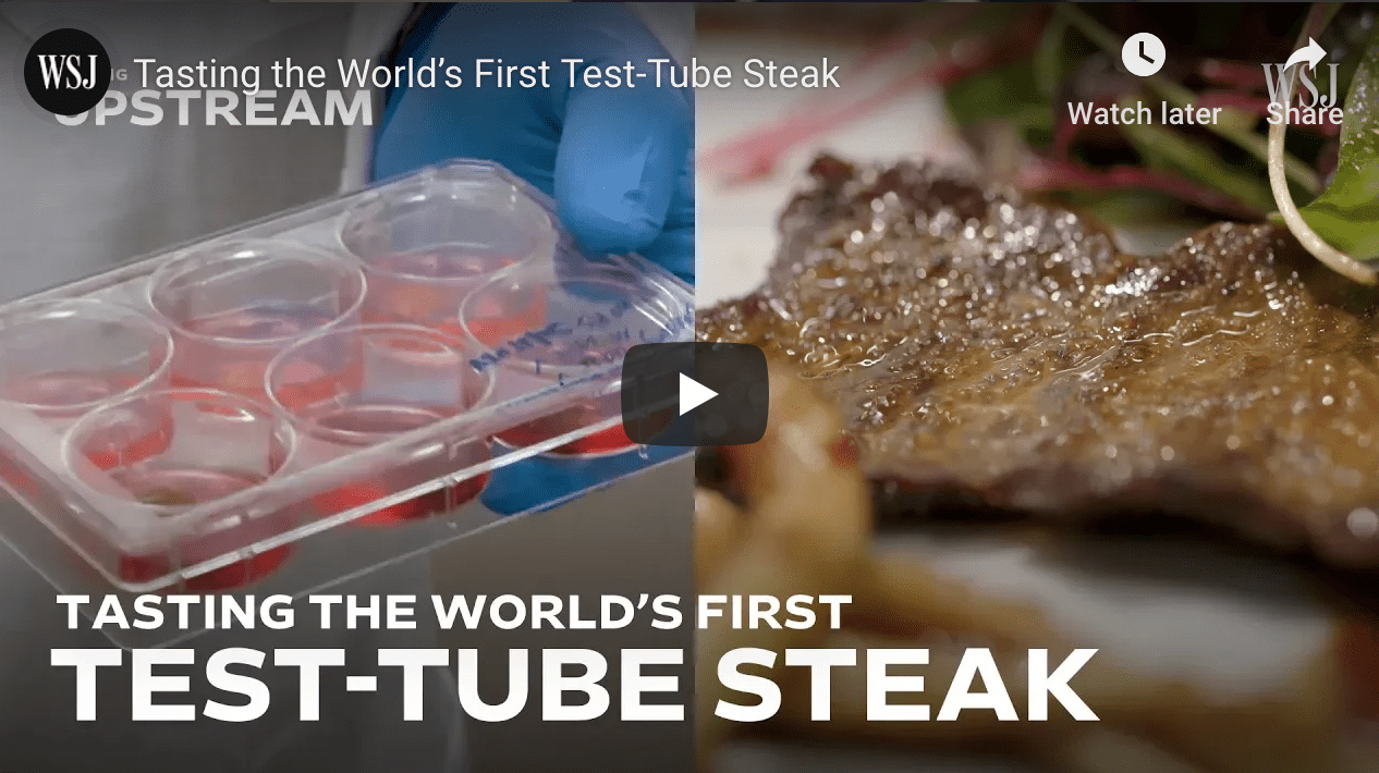 Lab-grown meat. The future?